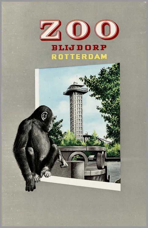 art-and-things-of-beauty: Zoo posters designs from around the...