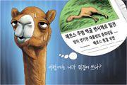 6월 11일 한겨레 그림판