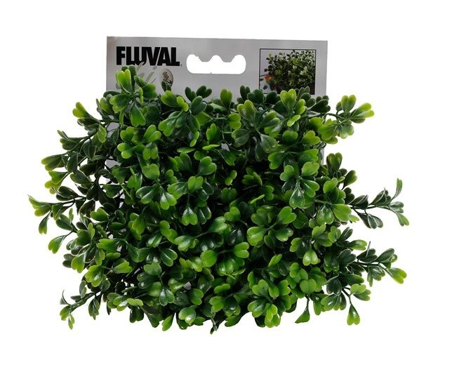 Fluval CHI Boxwood Ornament