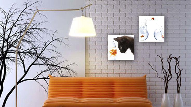 glasbilder mit beleuchtung stockfotos abbild und cdedaedacfd goldfish humor