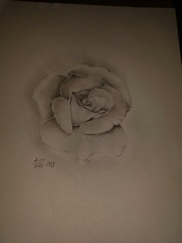 My drawing flower of my life