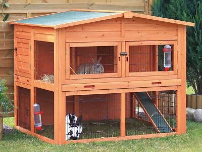 Here is a double rabbit hutch outside which is made of wood and wire mesh, with two rabbits on each floor.