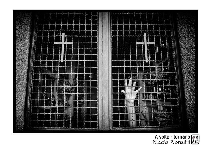 nicola_ronzitti.jpg (800×600)