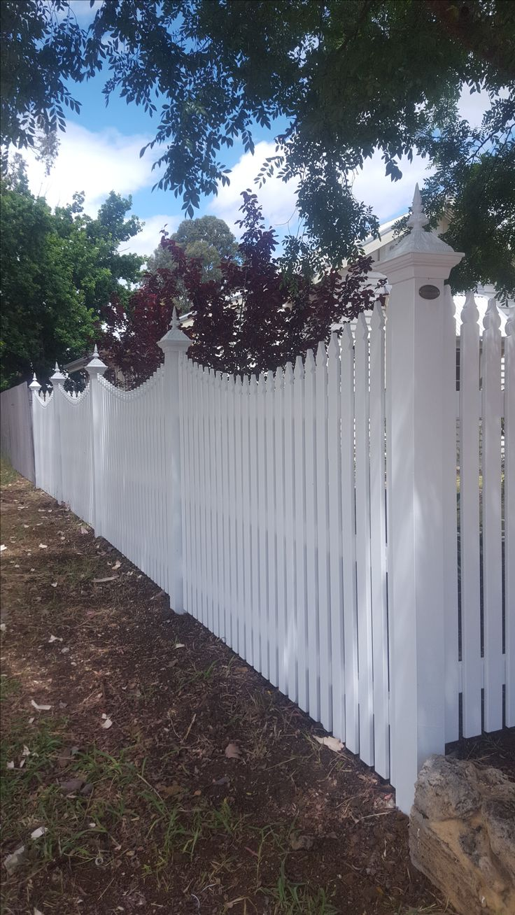 Concave picket fence with Angelina Capitiols