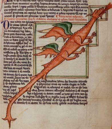 Dragon, paint on vellum from Deidis of Armorie, Scotland, late 15th century, British Library