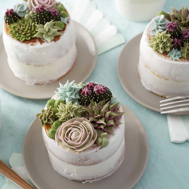 Learn how to use the decorating tips in your collection to create amazing blooming succulents.  Great for tea parties, birthdays, bridal showers and weddings, these stunning mini cakes are a great way to showcase your decorating skills.  Mix and match succulent styles and colors to create the edible garden of your dreams!