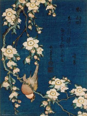 Katsushika Hokusai - Stehlík a třešeň, c.1834, Goldfinch and Cherry Tree, c.1834 Obrazy na AllPosters.cz.