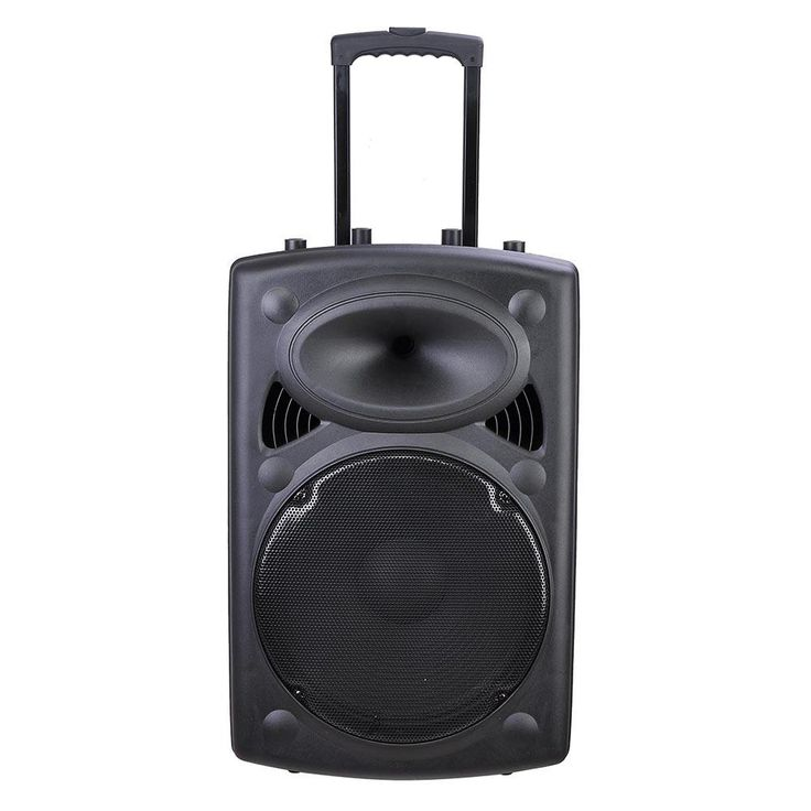 "15"" Portable Active PA Speaker w/ Microphone & Remote"