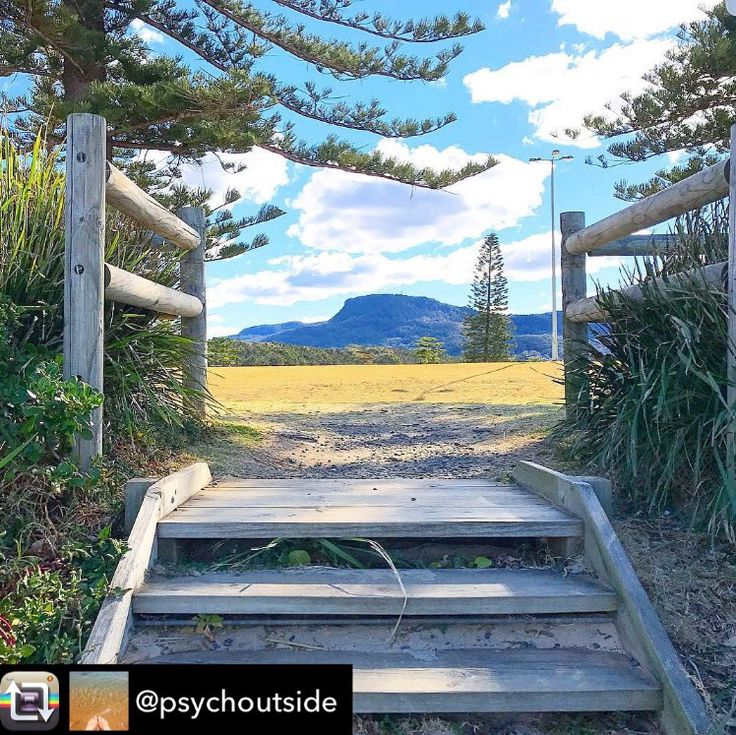 Helen: This was the view as I walked up the stairs away from the beautiful ocean... a change in perspective can be just as beautiful!