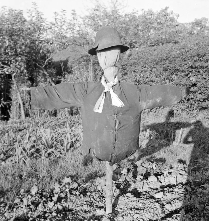 Photograph of a scarecrow taken near P.L. Travers' house in Sussex (1940 ) by Eileen Agar