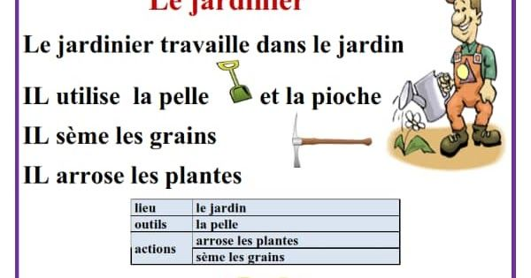 وضعيات عن المهن مادة اللغة الفرنسية السنة الرابعة و الخامسة ابتدائي | French  language, Words, Language