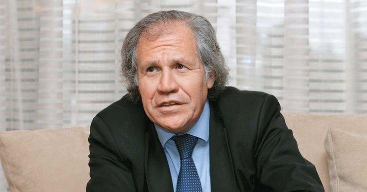 El escritor de 'El psicoanalista', uno de los thrillers sicológicos más vendidos en el mundo, habló con Semana.com.com de su visita a la feria del libro de Bogotá, del origen de sus historias y de su nuevo libro.