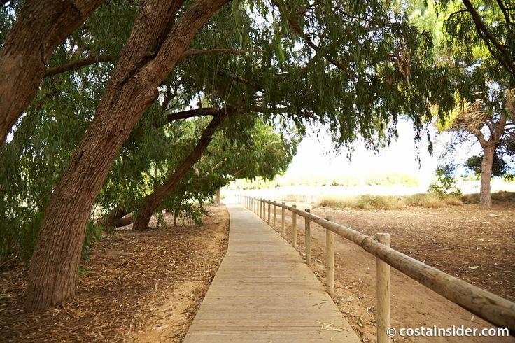 La Mata-Torrevieja Nature Park - Torrevieja Insider