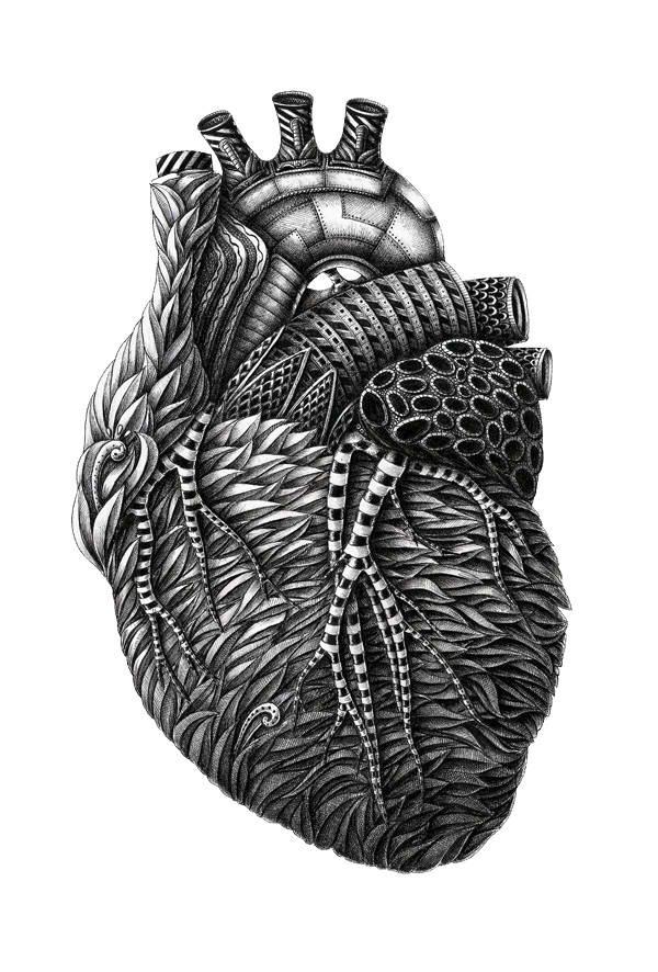 Anatomy by Alex Konahin. Possible tattoo idea?
