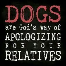 Dogs = Family