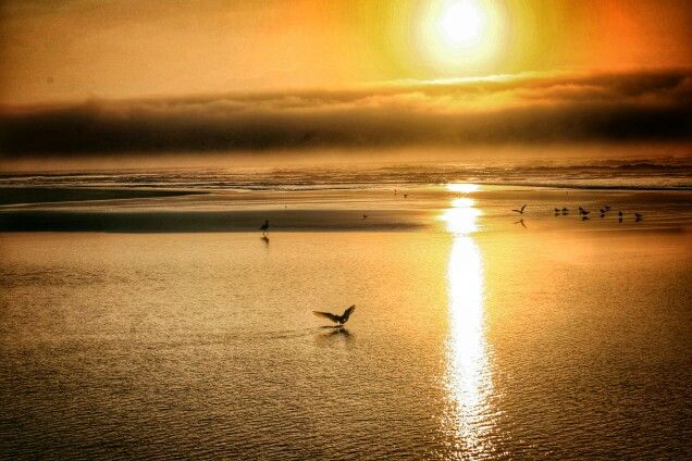 The Wild Coast, South Africa