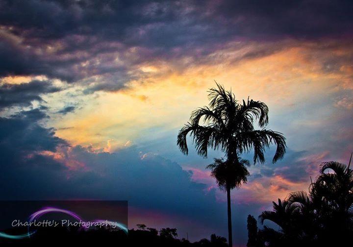 Trinity Park Sunset