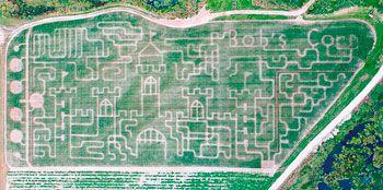Giant corn maze at Bob's Corn in Snohomish- 2011 maze