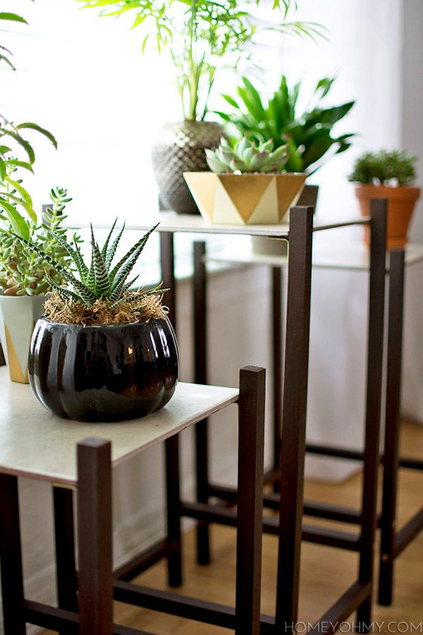 1000 Ideas About Indoor Plant Stands On Pinterest Plant