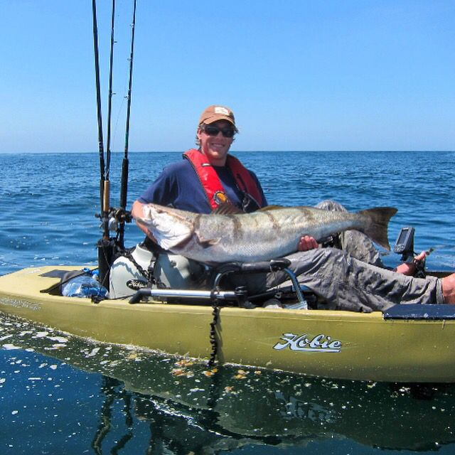 Another big catch while paddling the Hobie Pro Angler 12