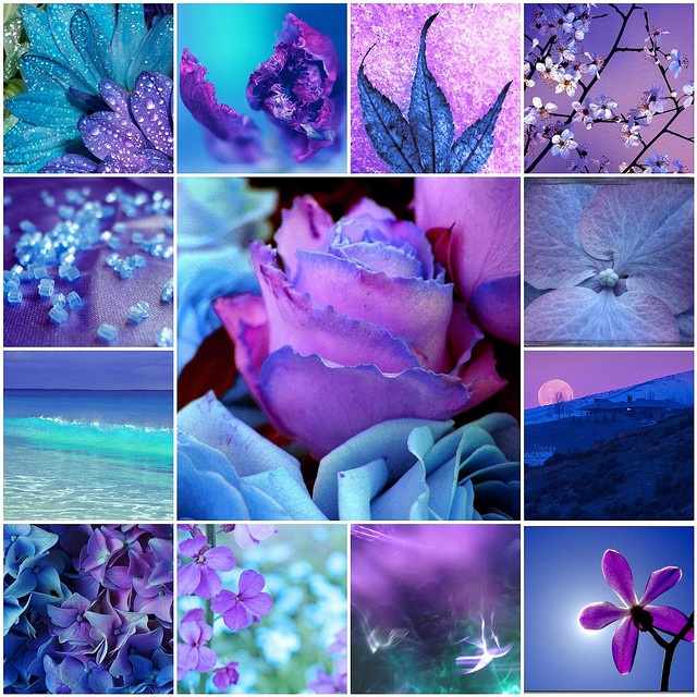 Purple & Aqua.. Not my colors but this is really pretty..