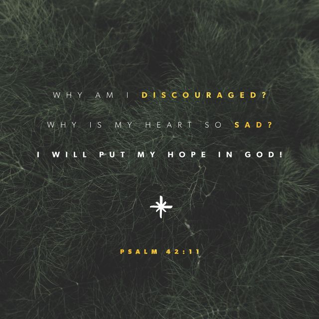 """Why art thou cast down, O my soul? and why art thou disquieted within me? hope thou in God: for I shall yet praise him, who is the health of my countenance, and my God."" ‭‭Psalms‬ ‭42:11‬ ‭KJV‬‬ http://bible.com/1/psa.42.11.kjv"