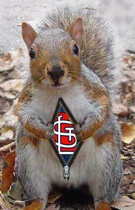 The real reason there's so many squirrels in our yard!!! We don't want to be the one who takes out the rally squirrel!