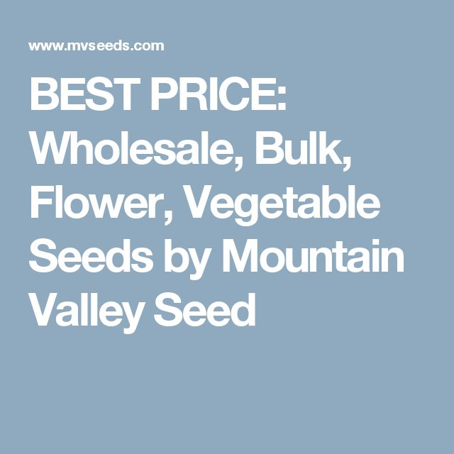BEST PRICE: Wholesale, Bulk, Flower, Vegetable Seeds by Mountain Valley Seed