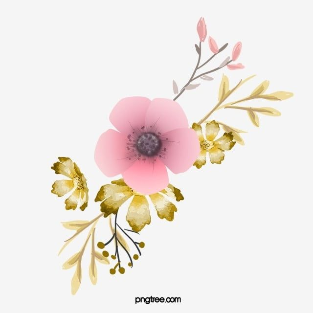 Floral Decoration Pink Leaves Watercolor Hand Painted Png Transparent Clipart Image And Psd File For Free Download Floral Decor Pink Leaves Quran Wallpaper