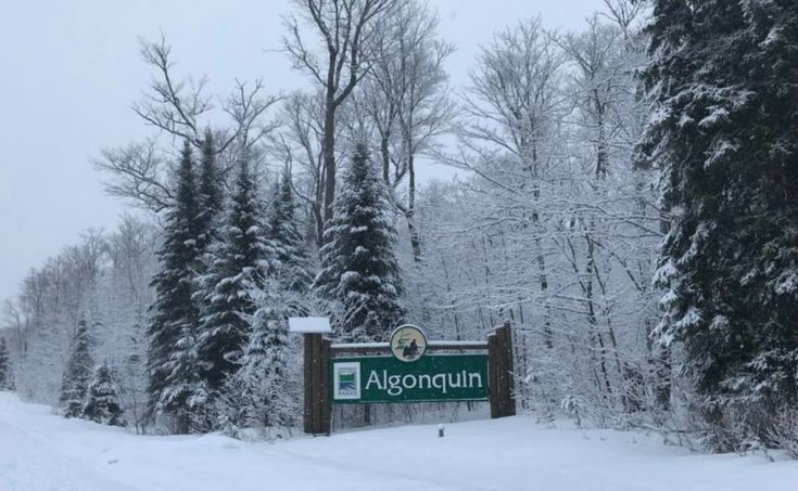 Algonquin Provincial Park is the most iconic place in the ...