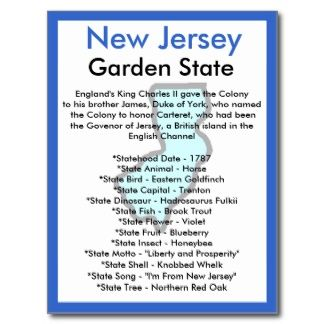 17 Best Images About Ss New Jersey On Pinterest Interesting Facts About Birds And Coloring