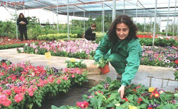 El 62% de los jóvenes compostelanos no aceptarían un primer empleo por menos de 20.000 euros anuales