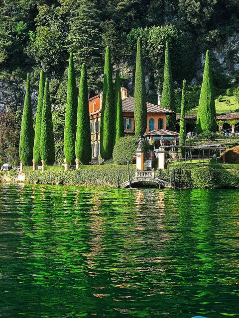 Green Cypress trees and reflections by The Villa, Lake Como, Italy www.theadventuresofapinkchampagnebubble.com