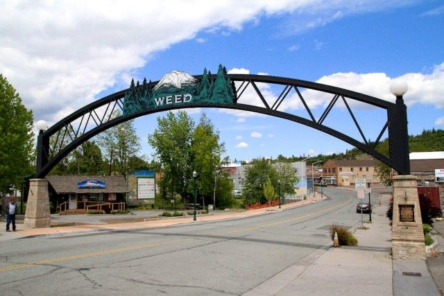 Weed-CA-sign