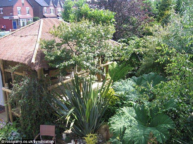 10 best jungle garden images on pinterest tropical for Jungle garden design ideas