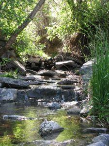 How to Build a self fed Backyard Stream - wish wish wish