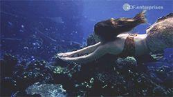 Best 25+ Mako mermaids ideas on Pinterest   Moon pool ...