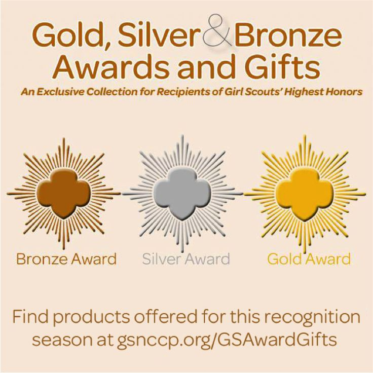 223 best Girl Scout Awards (Gold, Silver, Bronze) images on ...