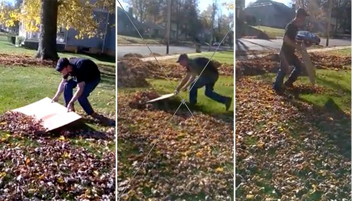 No leaf blower necessary! Watch video of how man clears yard of leaves with a cardboard box.