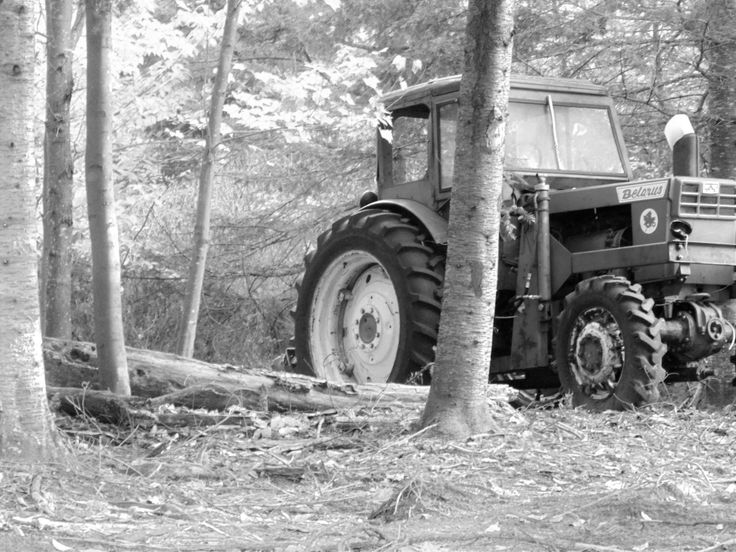 Black and white shot of old tractor clearing in a forest.
