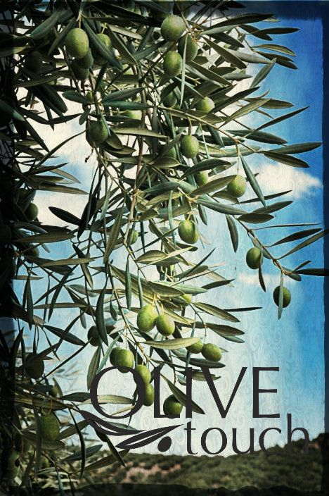 #olive #olivetree #oliveoil #naturalcosmetics #olivetouch