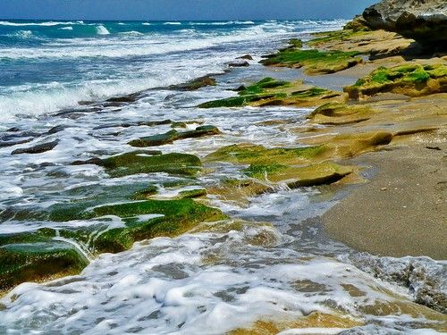 Blowing Rocks Preserve, Hobe Sound, Florida, United States