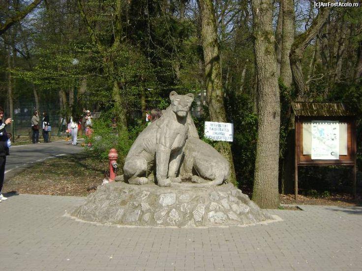 Prima grădină zoologică din România care intră pe harta mondială