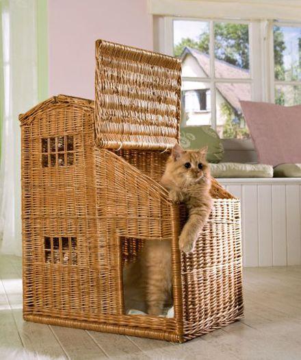 Silvio Design-Katzenhaus Weide