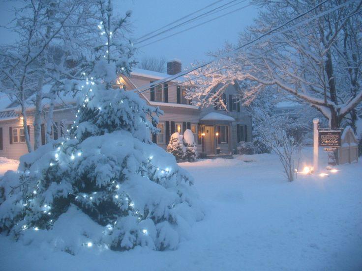 Cape Cod Snow