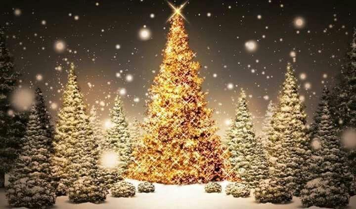 Hebrew Christmas