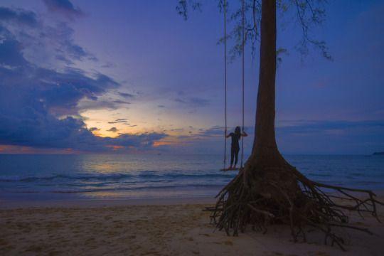 MilaMai Photography  The tree brought me here Source: milamai.tumbler.com