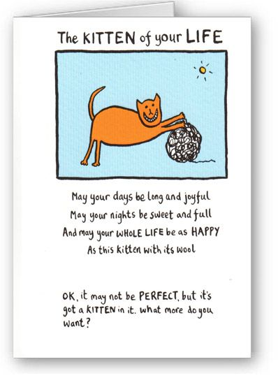 Edward Monkton - The Kitten of your Life