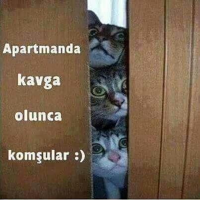 ✿ ❤ Yerim ben sizin kapı aralığından bakan gözlerinizi :)))