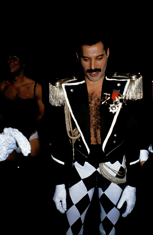 best 25  freddie mercury birthday ideas on pinterest